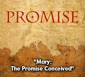 Mary: The Promise Conceived