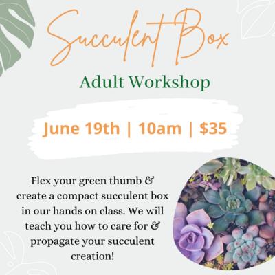 Succulent Box | June 19th