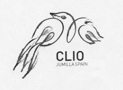 Bodegas El Nido Clio 2006 [95pts WA]