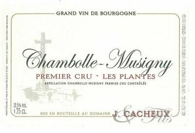 Jacques Cacheux Chambolle Musigny les Plantes 2015