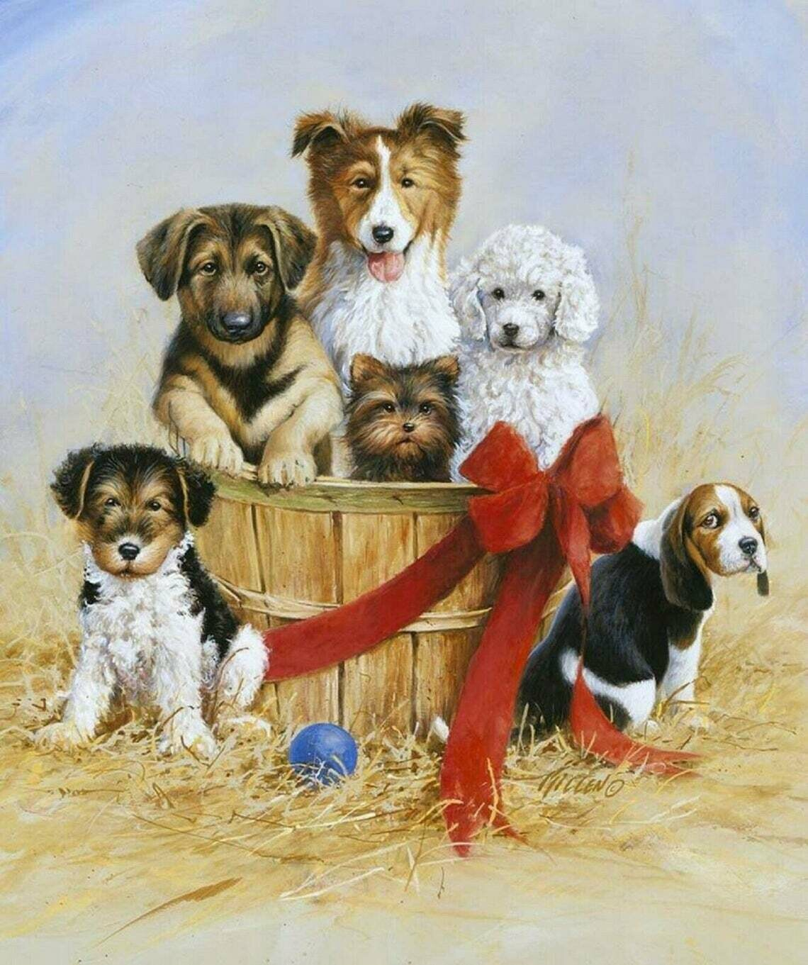 Wild & Playful Puppies - Riley Blake - PANEL