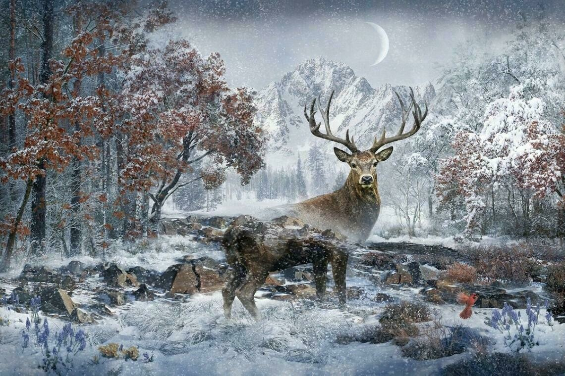 December Deer - Hoffman Fabrics - PANEL