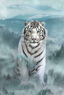 White Tiger - Hoffman Fabrics - PANEL