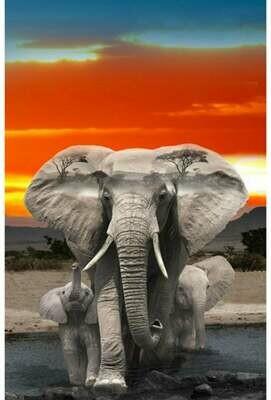 Elephants at Sunset - Hoffman Fabrics - PANEL