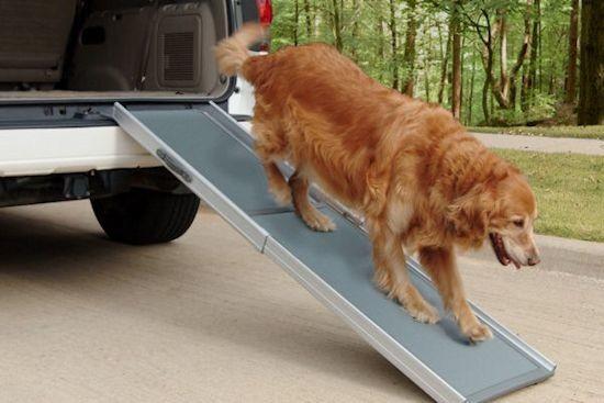 Petramp DeLuxe (luxe hondenloopplank)