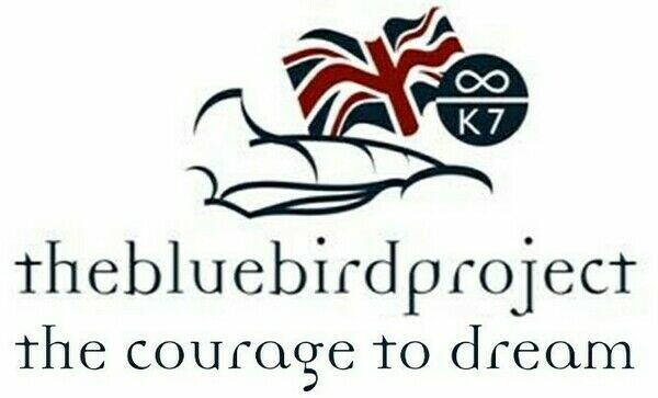 Bluebird Project Store