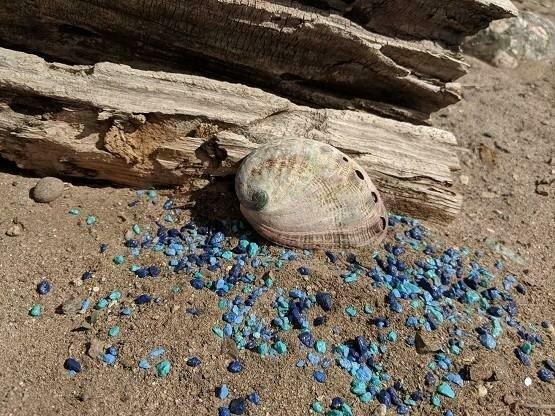 Gaia's Mermaid Shells