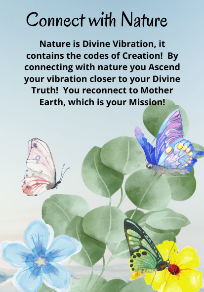 Mother of All Creation Divine Discipline Deck~Pre Sale