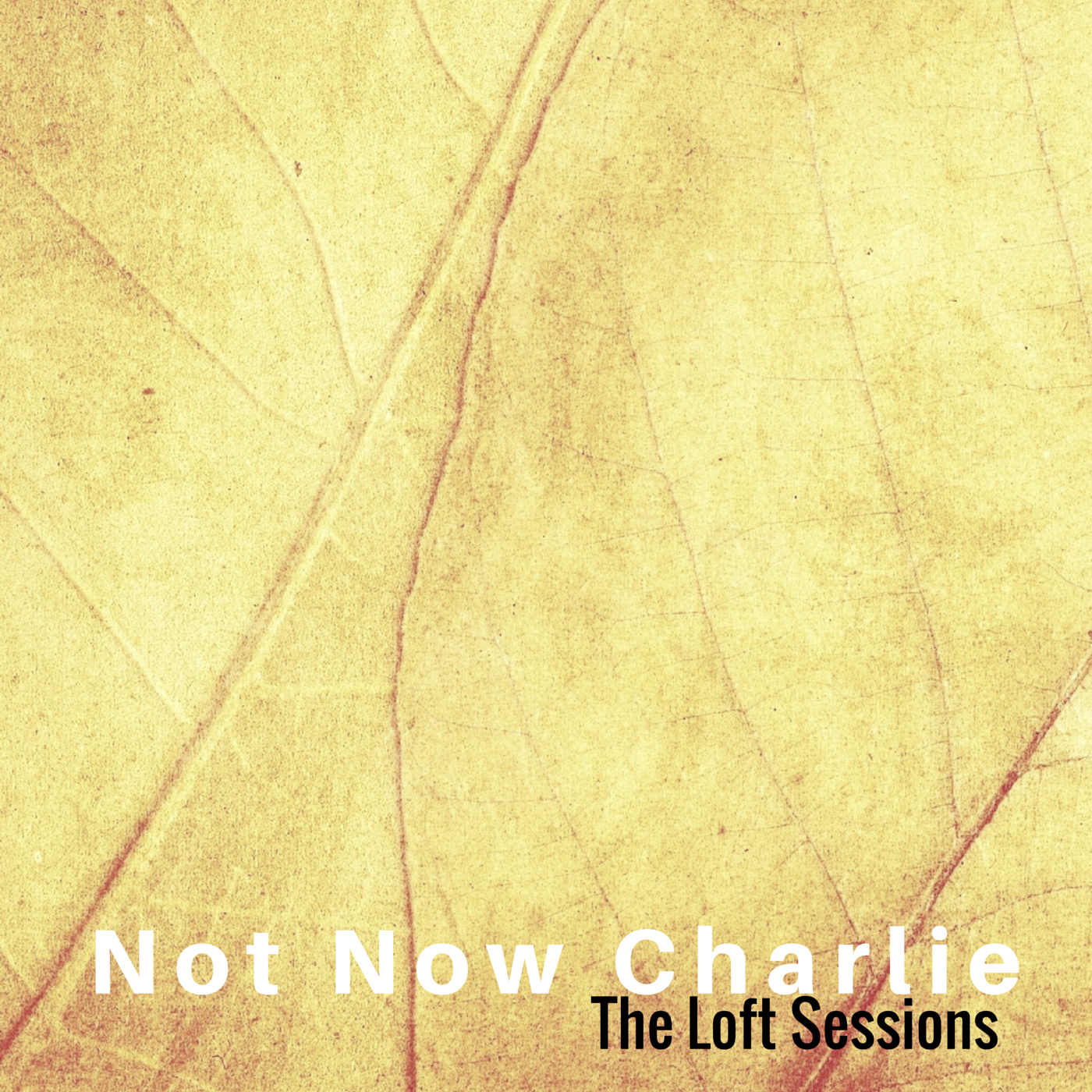 Not Now Charlie - The Loft Sessions