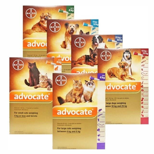 ADVOKAT ( ADVOCATE ) #Bayer