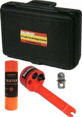 Audio/Visual Voltage Detector