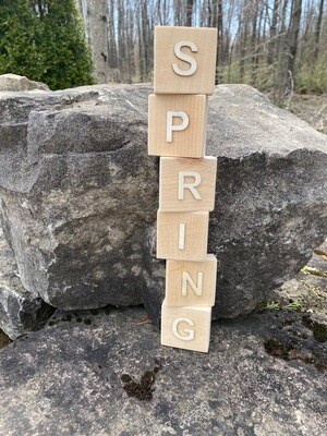 Spring/Summer Blocks (double-sided)