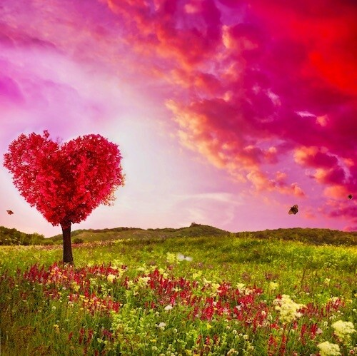 Archangels Chamuel & Charity Self Love Meditation
