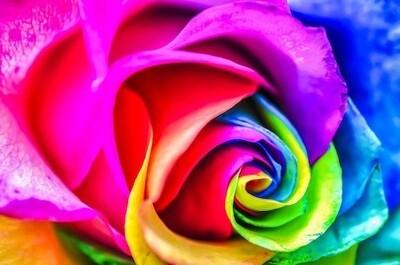 Rainbow Dragons & Unicorns Ascension Healing Workshop