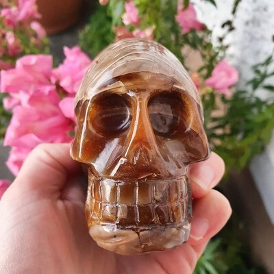 Ammonite Crystal Skull