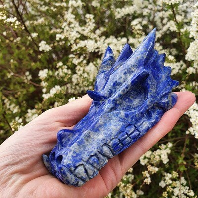 Lapis Dragon Skull 4