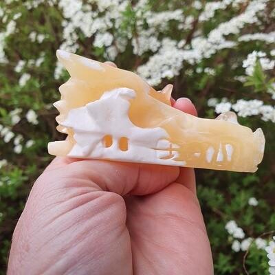 Orange Calcite Dragon Skull 3