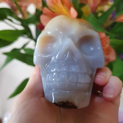 Blue Agate Geode Crystal Skull