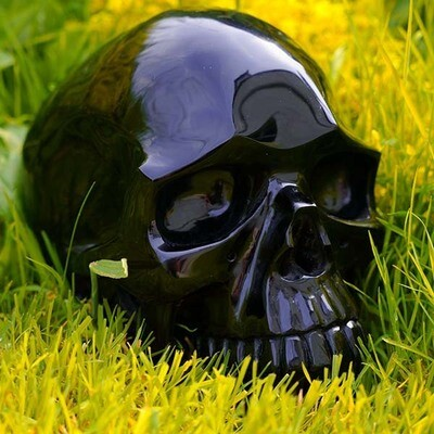 Creating Your Future - Siron Crystal Skull Healing