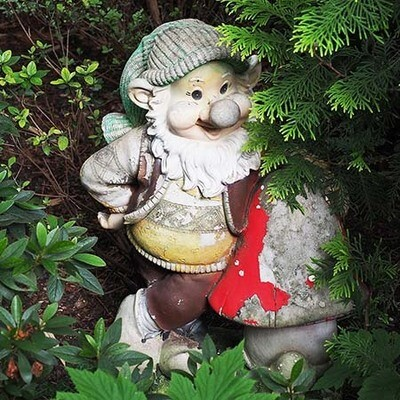 Co-creating Nature - Anchoring & Grounding with Gnomes