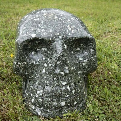 Lions Gate Abundance Ardmano Crystal Skull Healing