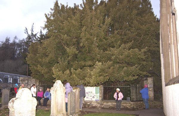 Fortingall Retreat Solstice Earth Healing 2016