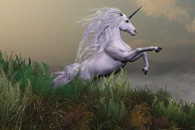 Unicorn Full Moon Workshop - Healing Your Heart
