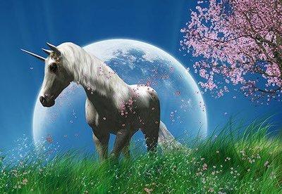 Emotional Healing with the Unicorns Full Moon Workshop
