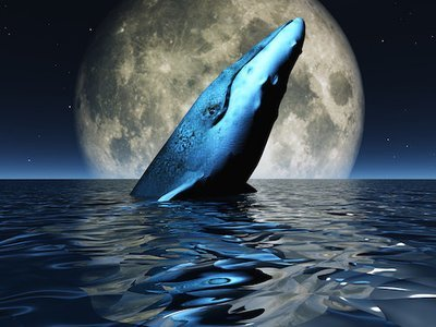 Master Melchizedek and the Whale Consciousness Full Moon