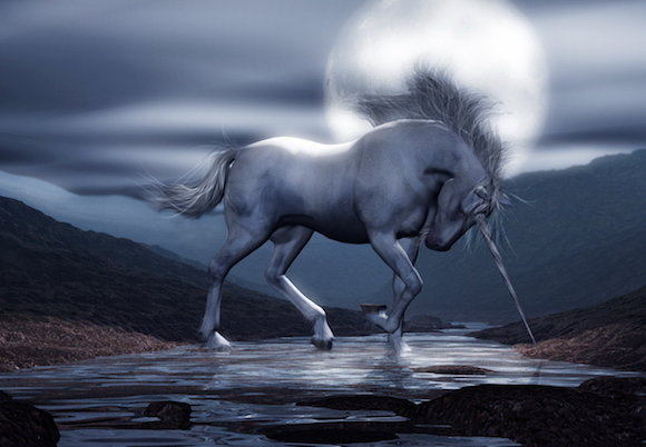 Accessing the Inner Heart Chamber with the Unicorns