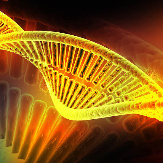 Golden DNA Light Code Transmission - New Moon Eclipse Gong Bath