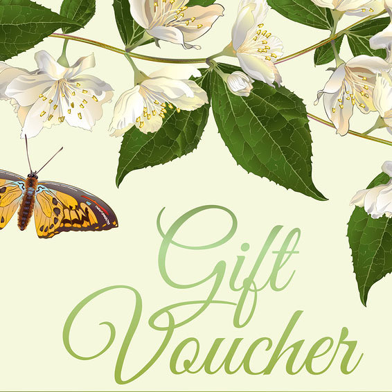 Gift Voucher Elemental Beings