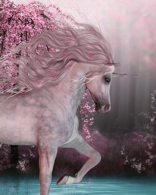 Unicorn Heart Workshop