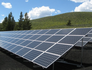 Bulk Solar Panels