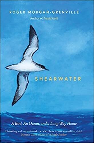 Shearwater: A Bird, an Ocean, and a Long Way Home