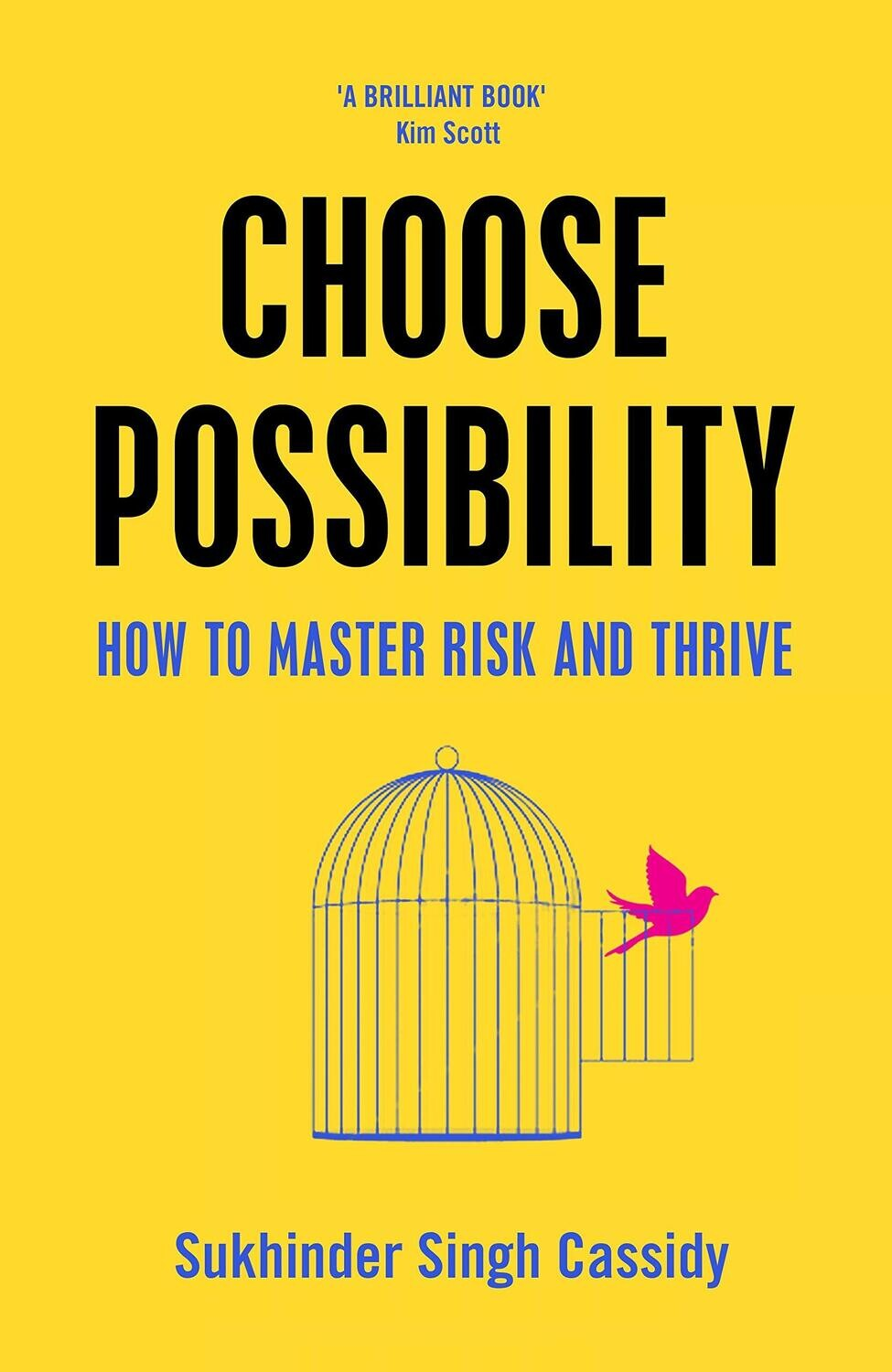Choose Possibility: How to Master Risk and Thrive