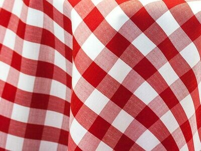 Red and White Checkered Tablecloth Rentals