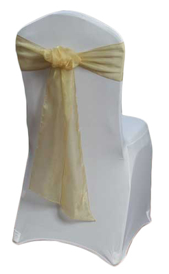 Gold Organza Sheer Sash Rental