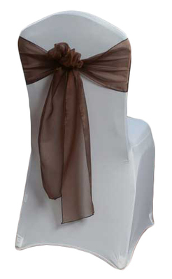 Chocolate Organza Sheer Sash
