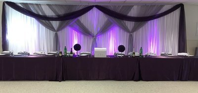 Silver & Eggplant Sheer Wedding Backdrop