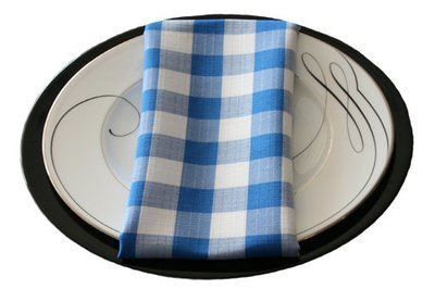 Blue Linen Check Napkin Rental