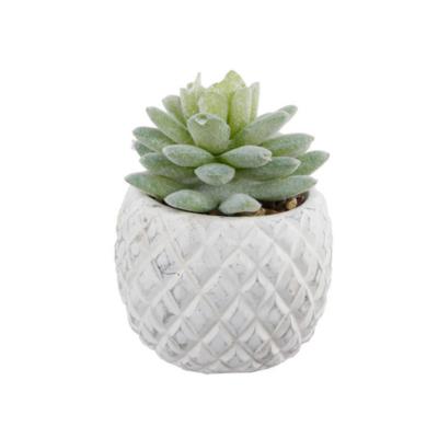 Faux Mini Succulent