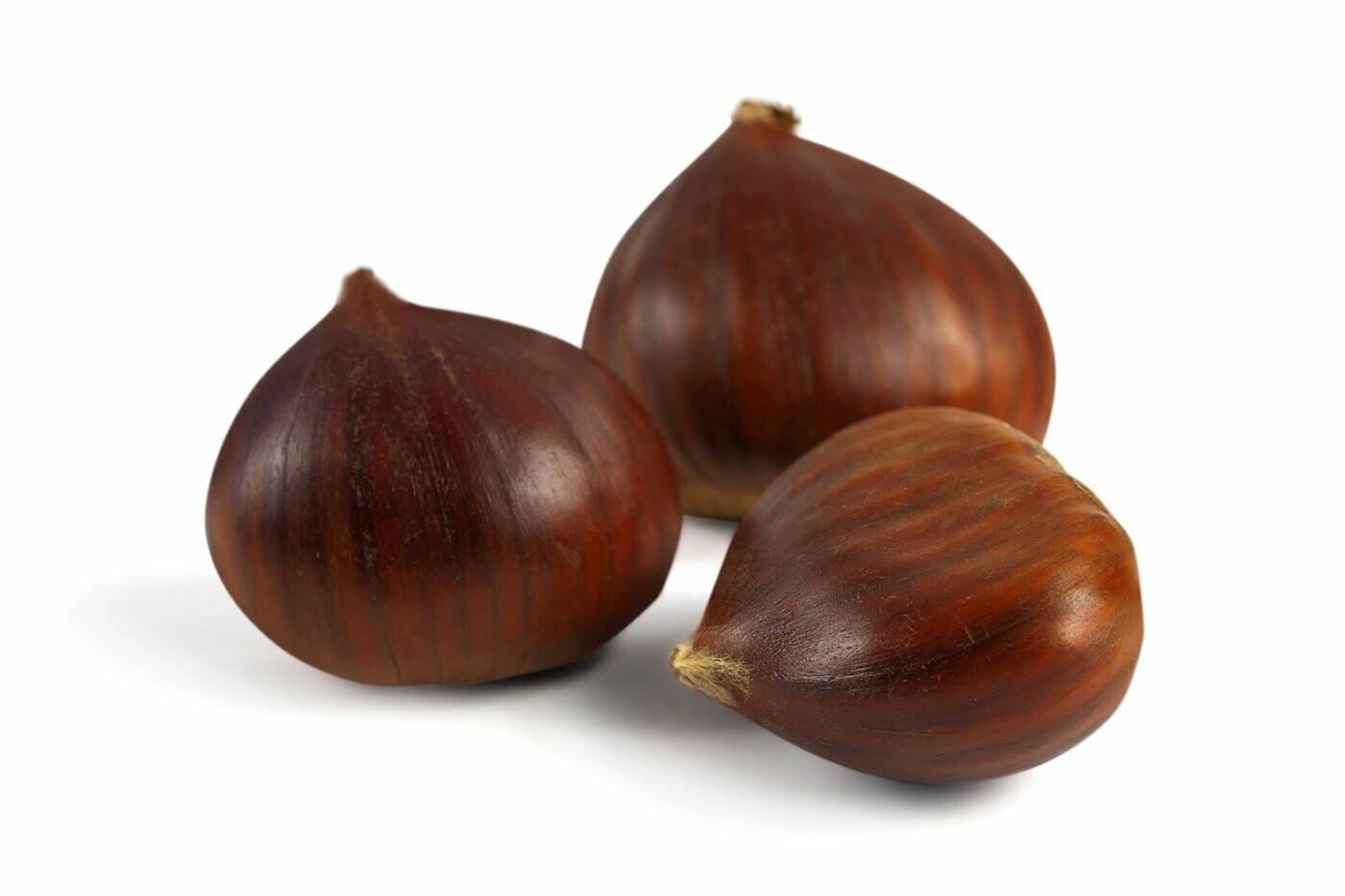 Chestnuts / Castanhas       (16 Ounces)