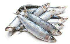 Portuguese Sardines (12 lbs) (Ship Separately - Ship Next Day)