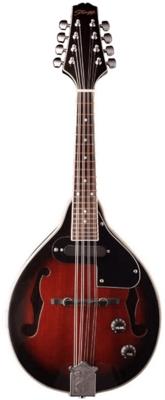 Stagg Mandolin M50 E