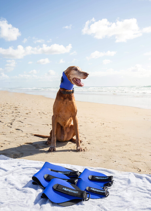Aquabandit Australia - Ear Protection for Dogs