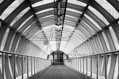 Sky Bridge 16x24 Metal Print