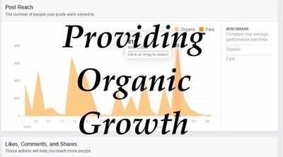 Organic Growth Marketing