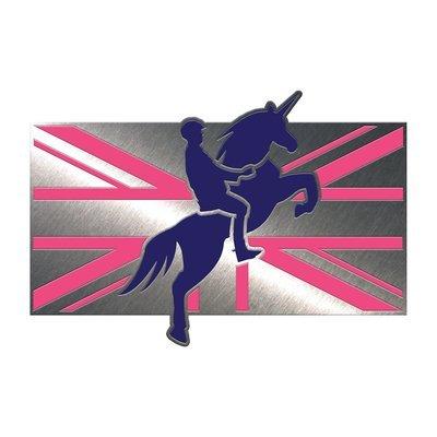 'Mounted Unicorn Division' Pin Badge