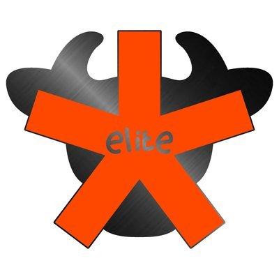 'Elite BullStar' Pin Badge